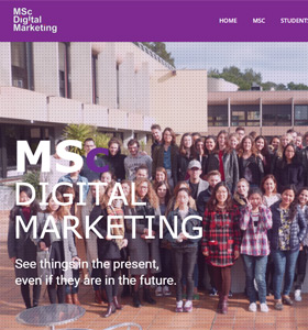 MSc Digital Marketing dedicated website made by students